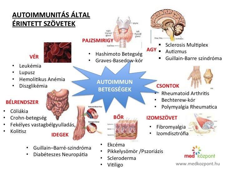 autoimmunitas altal erintett szovetek