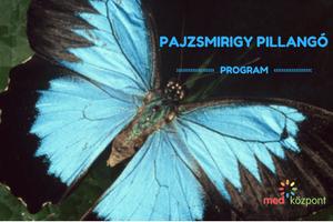 Pajzsmirigy Pillangó Program