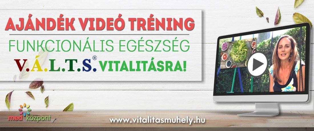 vitalitas_muhely